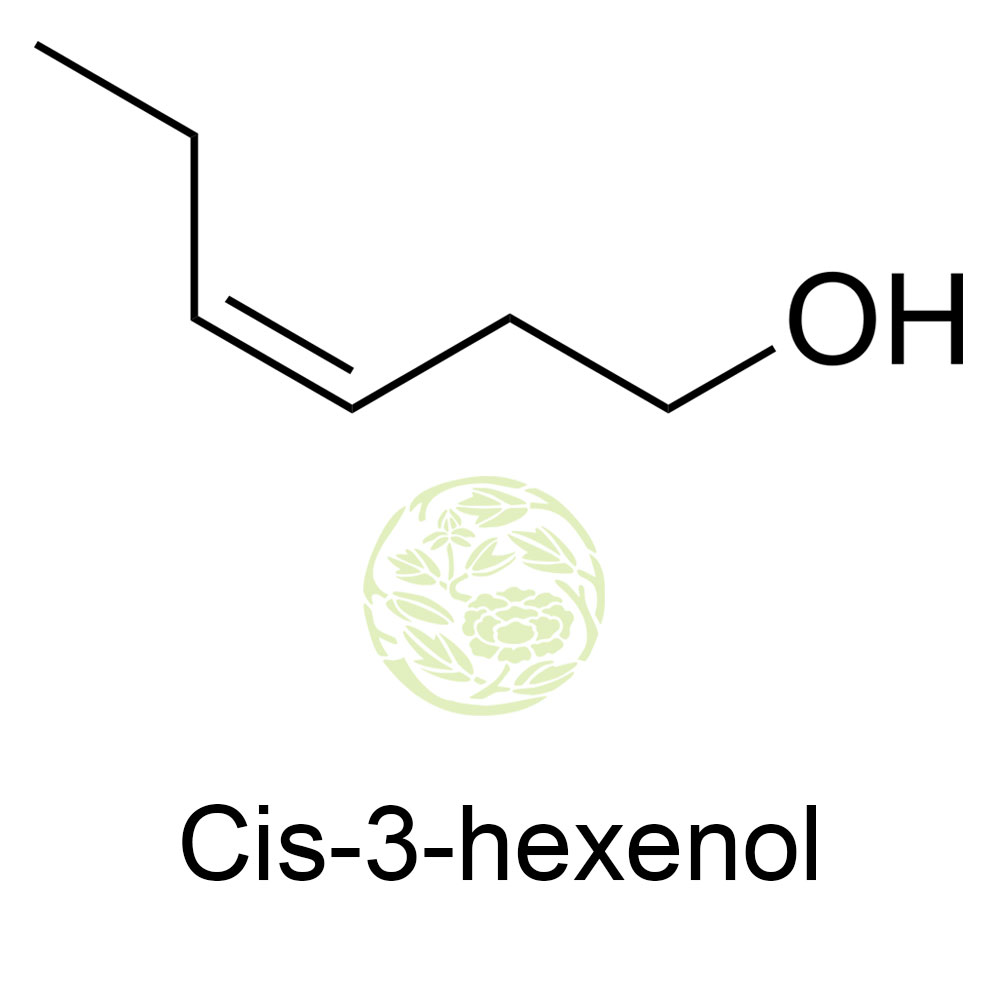 cis 3 Cis-3-hexen-1-ol, also known as (z)-3-hexen-1-ol and leaf alcohol, is a colorless oily liquid with an intense grassy-green odor of freshly cut green grass and leaves.
