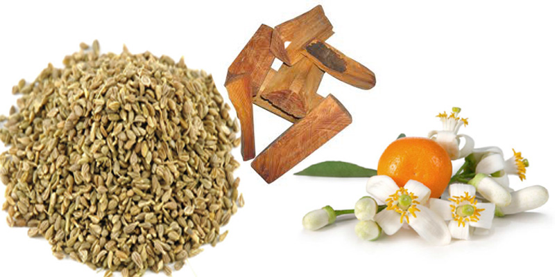 essential-oil-for-body-perf